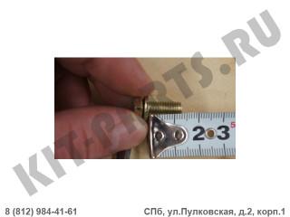Болт петли крышки багажника для Lifan X50 Q1410616