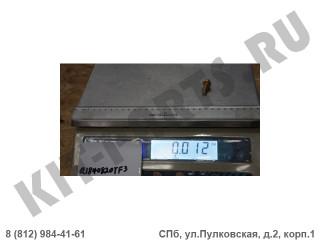 Болт петли двери для Lifan X50 Q1840820TF3