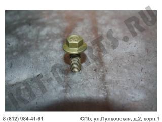Болт крепления дверной петли для Lifan X60 Q1840825TF2