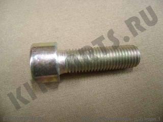 Болт крепления крышки ступицы для Great Wall Hover Q218B1020